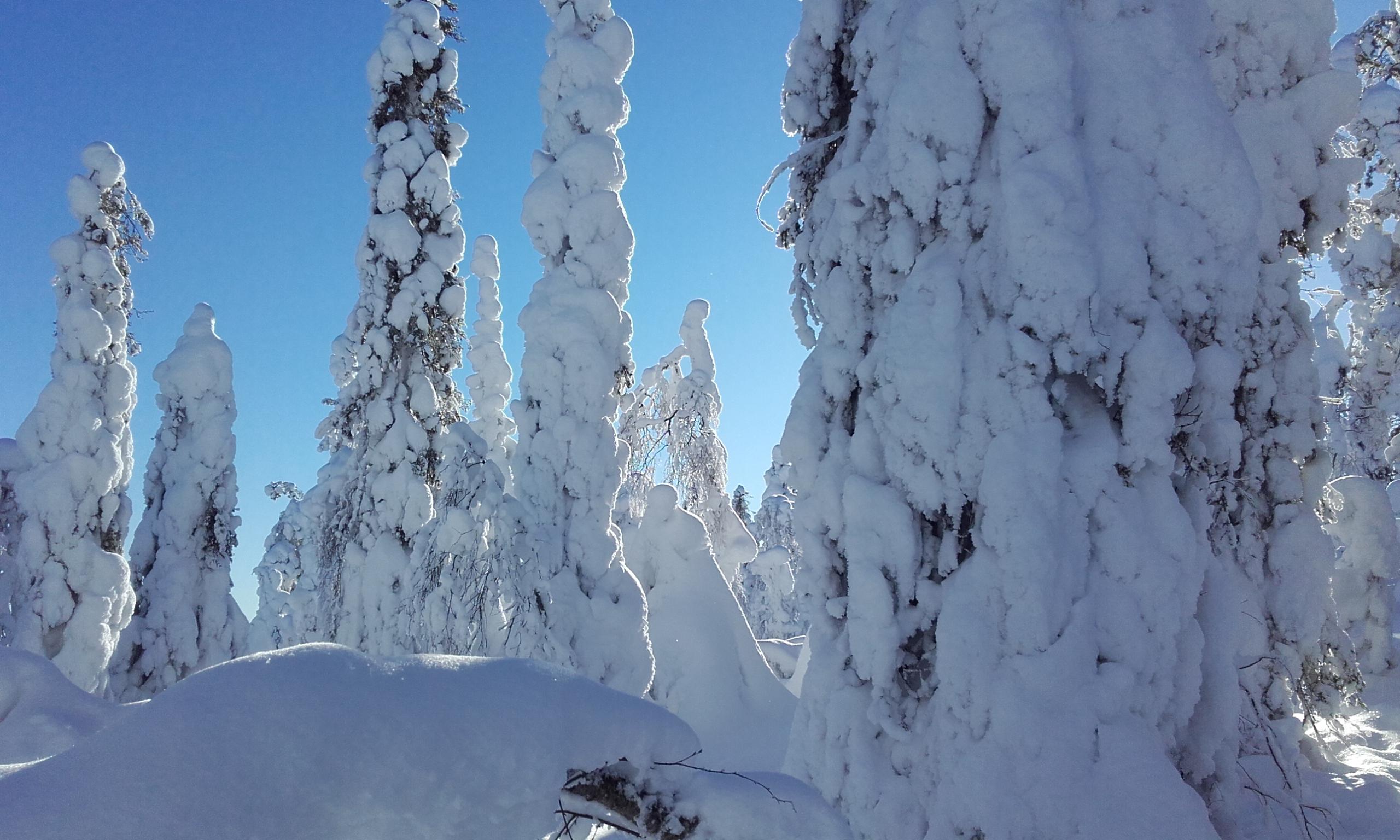 Formas en la nieve