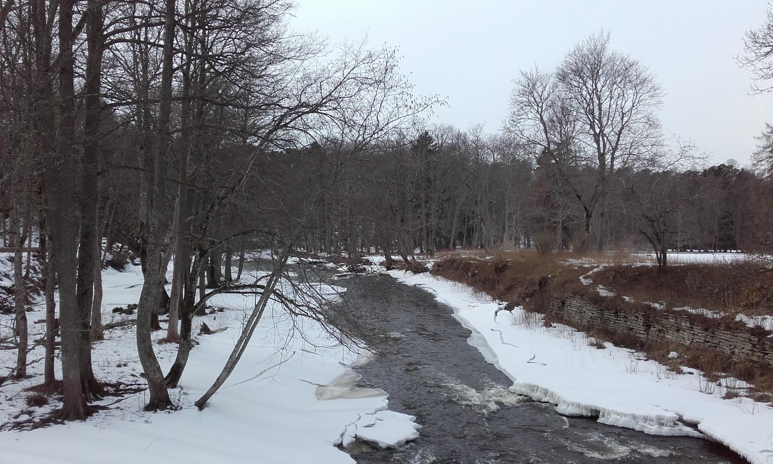 Caminando por el borde del río
