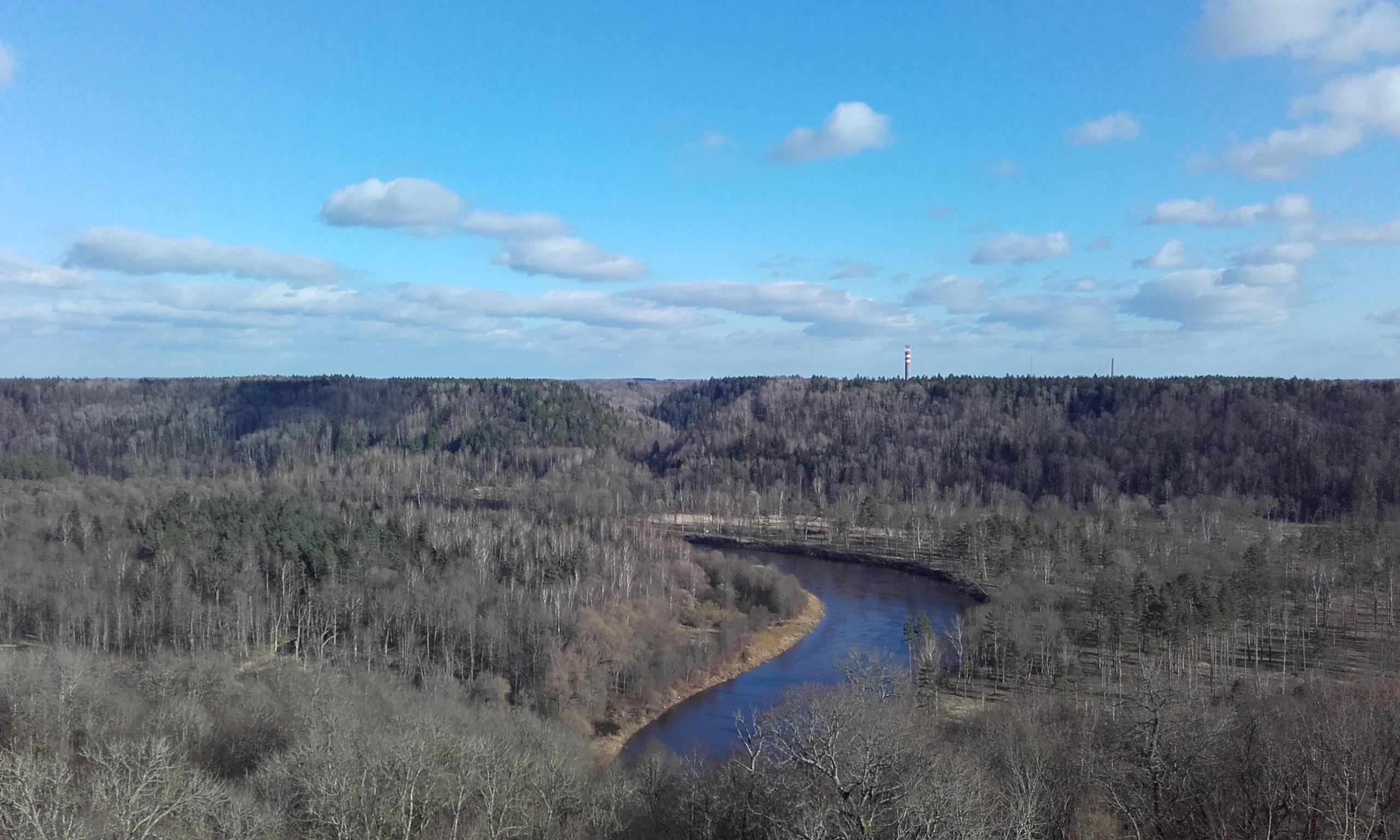 Vistas del parque del Gauja desde la torre mirador