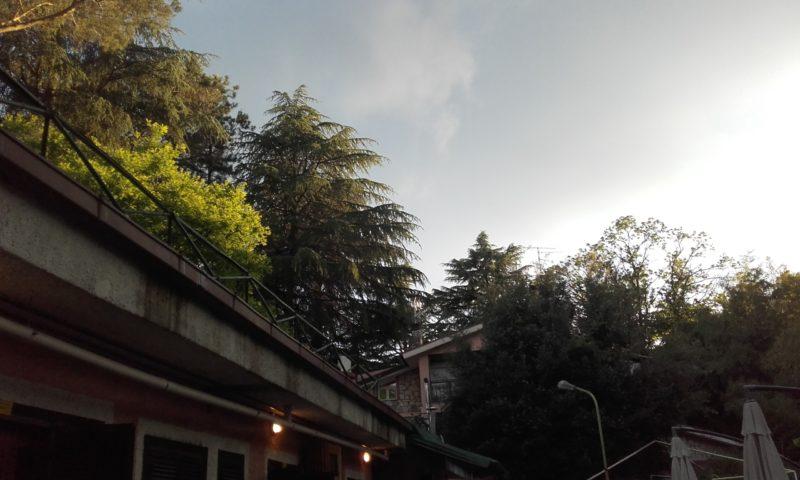 La terraza donde hemos hecho yoga y meditación