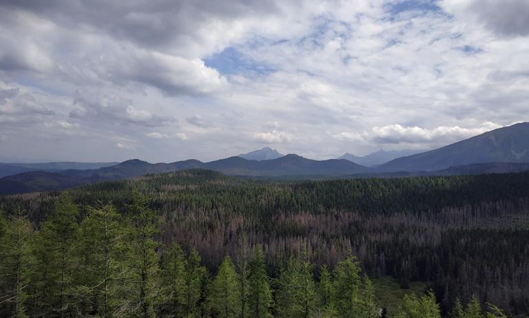 Valle de Olczyska en los montes Tatras