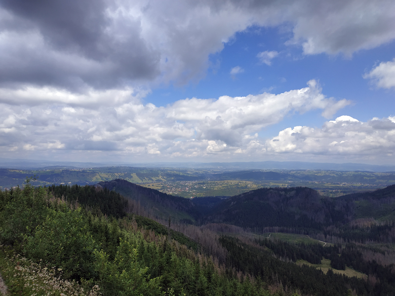 La colina de Olczyska