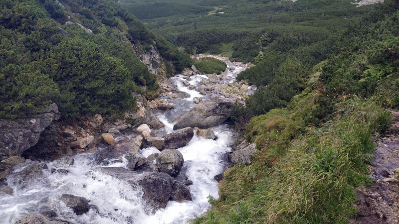 El río que nace de Czarny Staw Gąsienicowy