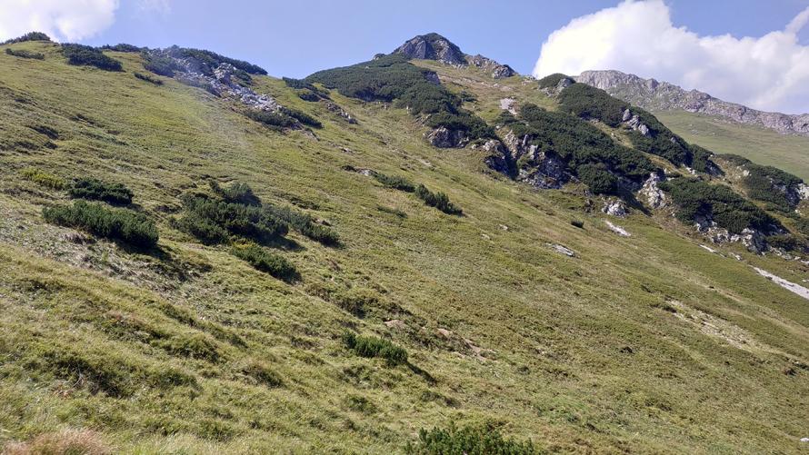 Valle donde encontramos a los castores